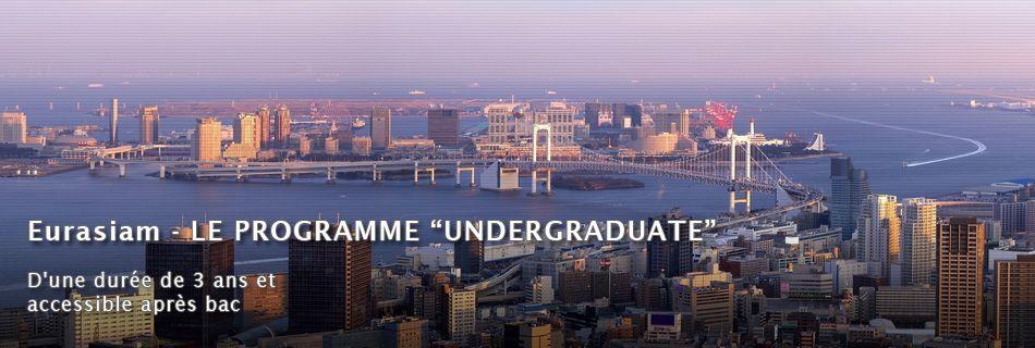 Programme Undergraduate